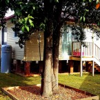 granny-flats in glenfield sydney